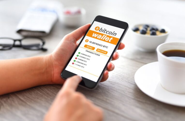 What Bitcoin Wallet Should I Use Types Of Wallets Explained